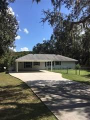 Single Family for sale in 8493 N Oak River Way, Hernando, FL, 34442