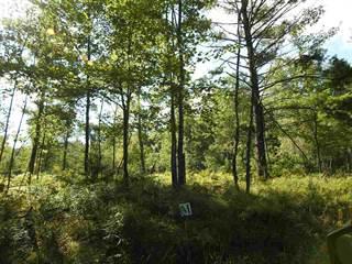 Land for sale in Parcel M Meadow Valley, Goodrich, MI, 48438