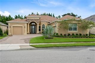 Single Family for sale in 8340 BRIDGEPORT BAY CIRCLE, Mount Dora, FL, 32757