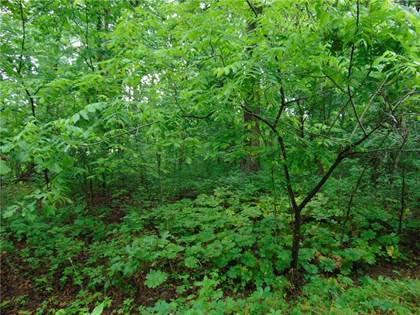 Lots And Land for sale in Gibson  LN, Bella Vista, AR, 72715