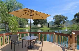 Apartment for rent in Lago Bello - The King's Den, Tampa, FL, 33613
