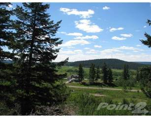 Land for sale in LOT 10 GOLD DIGGER DRIVE, 150 Mile House, British Columbia