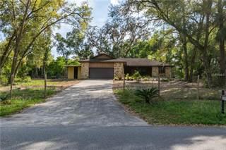 Single Family for sale in 23958 OAK TREE DRIVE, Sorrento, FL, 32776