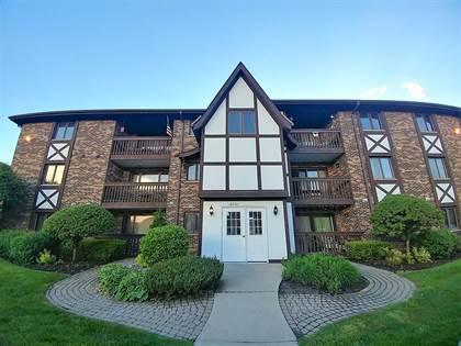 Residential Property for sale in 10231 Major Avenue 106, Oak Lawn, IL, 60453