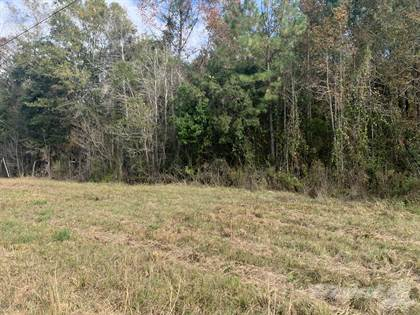 Lots/Land for sale in 7900 MONCRIEF RD, Jacksonville, FL, 32219