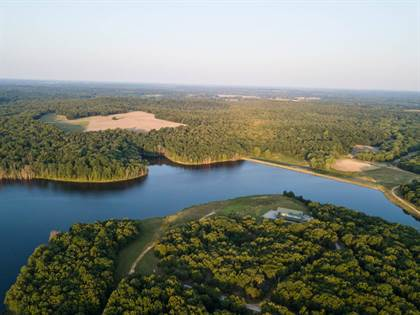 Farm And Agriculture for sale in TBD Hwy J, Collins, MO, 64738
