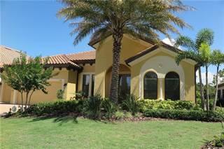 Single Family for sale in 1515 VIA VERDI DRIVE, Palm Harbor, FL, 34683