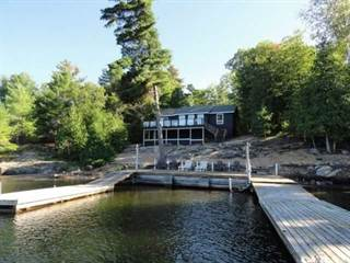 Residential Property for sale in 1258 North South Rd, Georgian Bay, Ontario
