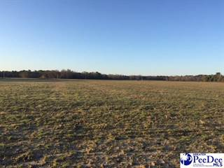 Land For Sale In Florence Sc >> Land For Sale Florence County Sc Vacant Lots For Sale In Florence