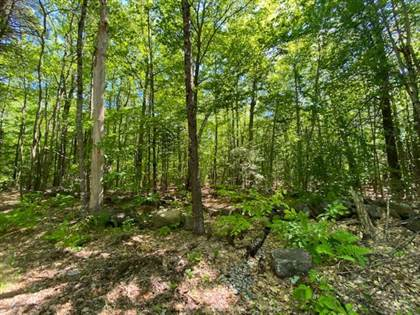 Lots And Land for sale in 0 White Mountain Highway, Greater Sanbornville, NH, 03872