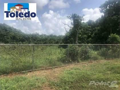 Residential Property for sale in Bo. Pugnado Afuera , Vega Baja Puerto Rico 00646, Vega Baja, PR, 00693