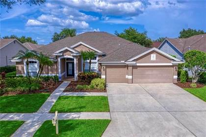 Residential Property for sale in 10262 SHADOW BRANCH DRIVE, Tampa, FL, 33647