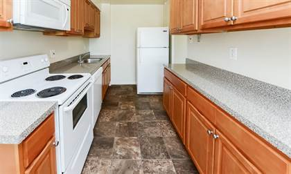 Apartment for rent in 106 Chestnut St, Cherry Hill, NJ, 08002