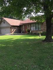 Single Family for sale in 1310 Mary Lane, Aurora, MO, 65605