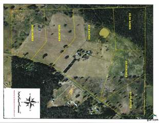 Lots And Land for sale in 000-TR 5 CR 3602, Bullard, TX, 75757