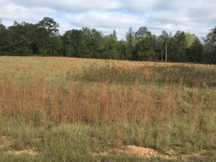 Lots And Land for sale in xxxx Clearveiw East Drive, Magnolia, MS, 39652
