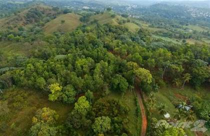 Lots And Land for sale in VENTA FINCA EN PIEDRA BLANCA, BONAO, Piedra Blanca, Monseñor Nouel