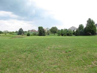 Land for sale in Lot 49 Audrey Avenue, Greater Yorkville, IL, 60560