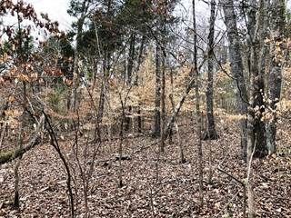 Land for sale in Pinecrest Drive, Loudon, TN, 37774
