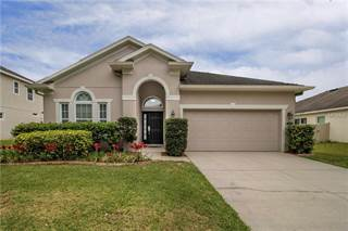 Single Family Homes For Sale In Seffner Fl Point2 Homes