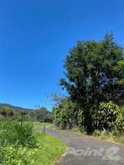 Lots And Land for sale in LOTE  DE 600 M2 PARA VIVIENDA EN MORAZAN DE ATENAS, Atenas, Alajuela