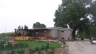 Single Family for sale in 3796 Lane 32 1/2, Greybull, WY, 82426