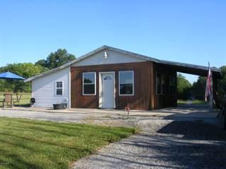 Single Family for sale in 930 Ozark Road, Ozark, IL, 62972