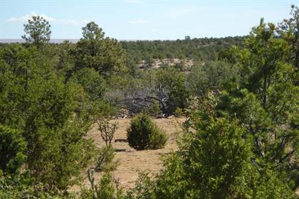 Lots And Land for sale in Lot 48 Stone Mountain, Roy, NM, 87743