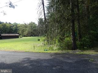 Farm And Agriculture for sale in 204 STADDEN, Stroudsburg, PA, 18360