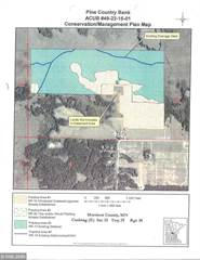 Land for sale in 9524 240th Street, Cushing Twp, MN, 56475