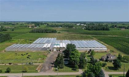 Farm And Agriculture for sale in 1126 Line 8 Rd, Niagara-on-the-Lake, Ontario, L0S 1J0