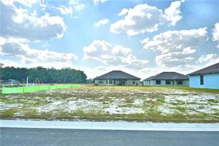 Single Family for sale in 216 HERITAGE PARK LANE, Mulberry, FL, 33860