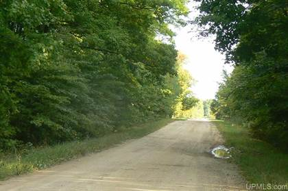 Lots And Land for sale in TBD Slapneck 1, Chatham, MI, 49816