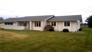 Single Family for sale in 1504 S RAISINVILLE Road, Greater Dundee, MI, 48161