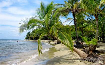 Residential Property for sale in Cabin Near the Sea, Puerto Viejo, Limón