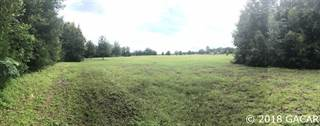 Land for sale in 000 SW 100 Street, Trenton, FL, 32693