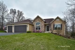 Single Family for sale in 11121 Thrush Creek Drive, Richmond, IL, 60071