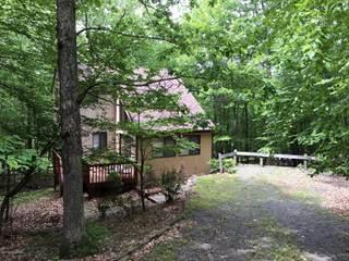 Single Family for sale in 453 Fawn Run, Bushkill, PA, 18324