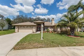 Single Family for sale in 11009 Audie Brook Drive, Spring Hill, FL, 34608