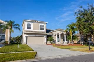 Single Family for sale in 2538 BARWICK STREET 1, Meadow Woods, FL, 32824