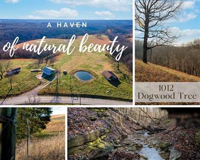 Farm And Agriculture for sale in 1012 Dogwood Tree Road, Reeds Spring, MO, 65737