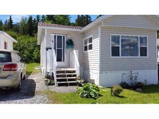 Residential Property for sale in 8 Wildwood Ave, Corner Brook, Newfoundland and Labrador