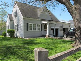 Single Family for sale in 301 Mill Street, Carrier Mills, IL, 62917