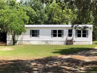 Residential Property for sale in 657 E La Salle Street, Hernando, FL, 34442
