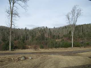 Farm And Agriculture for sale in 8490 Little Creek Road, White Sulphur Springs, WV, 24986