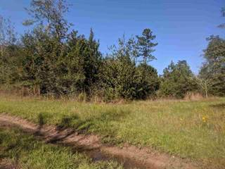 Land for sale in 000 Any Old Street, Buna, TX, 77612