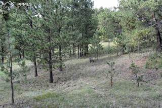 Land For Sale Colorado Springs >> Land For Sale West Colorado Springs Co Vacant Lots For