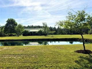 Single Family for sale in 2186 N Highway 81, West Holmes, FL, 32464