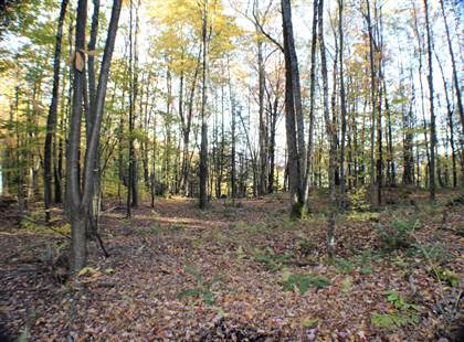 Lots And Land for sale in 3332 Spruce Flat Rd, Marlinton, WV, 24954