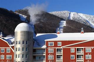 Residential Property for sale in 102 Forest Drive #218 / II 218 / II Clay Brook at Sugarbush, Sugarbush Village, VT, 05674